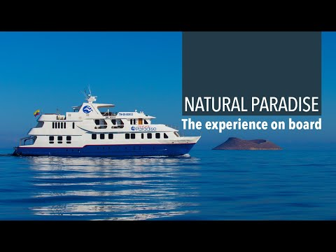 Discover the Galapagos aboard the Natural Paradise