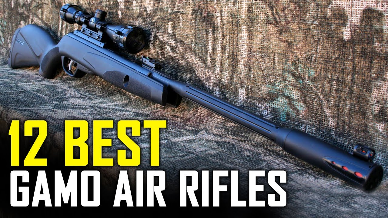 12 Best Gamo Air Rifles For Hunting 2019 - Top 12 Best Gamo Air Rifles