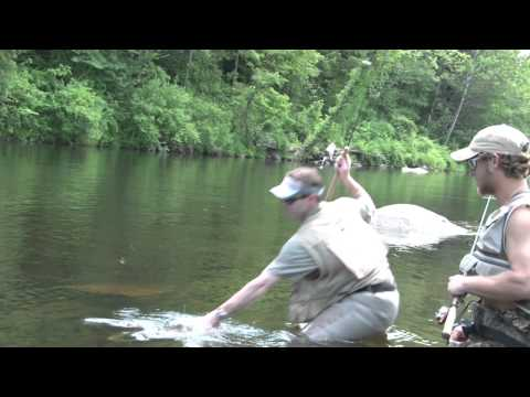 Monster Rainbow Trout Caught On Ultralight Fishing Tackle