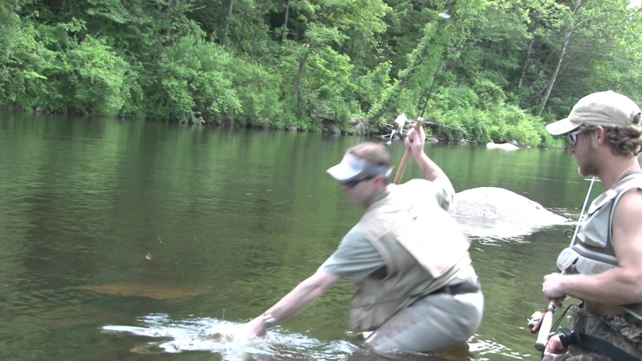 monster rainbow trout caught on ultralight fishing tackle - youtube, Reel Combo