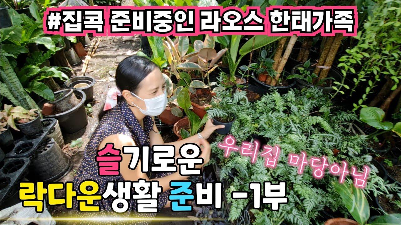 [66] ซับไทย) 한국은 추석연휴인데.. 라오스는 더 강력한 락다운 시작입니다 | 슬기로운 락다운 생활준비 - 1부