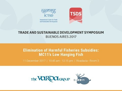 Elimination of harmful fisheries subsidies: MC11's Low Hanging Fish