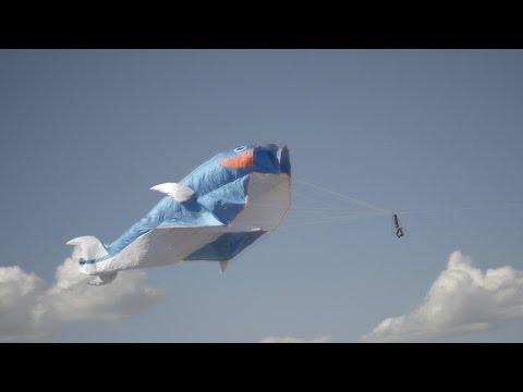KZT 14: СИНИЙ КИТ. Воздушный змей.