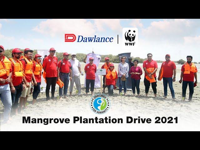 Dawlance | WWF Pakistan | Mangrove Plantation Drive