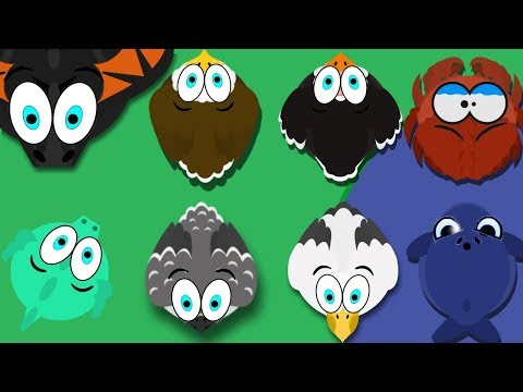 MOPE IO/ NEW BIRDS UPDATE/ DRAGON & BLUE WHALE TROLL/ IS THIS UPDATE GOOD?