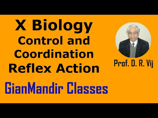 X Biology | Control and Coordination | Reflex Action by Manjit Ma'am