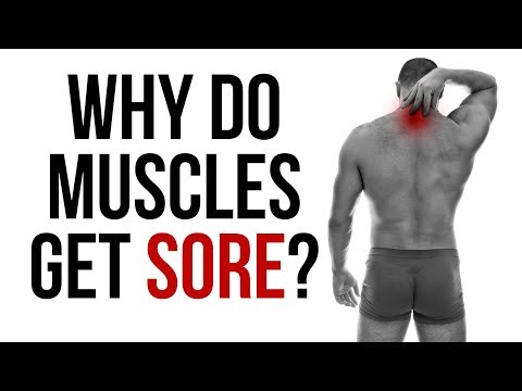 Why Do Muscles Get Sore?