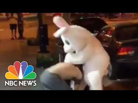 Easter Bunny Fights In Defense Of Woman Outside Orlando, Florida Bar | NBC News