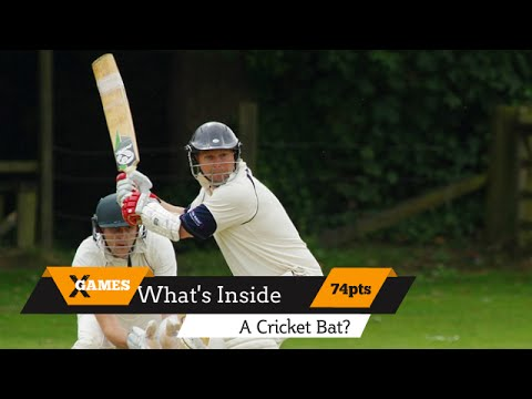 See the Inside of a Cricket Bat