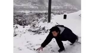 Как напугать злую собаку [видеожесть]