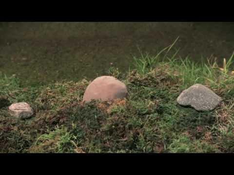 Rock Club - True Nature (big play films)