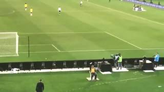 Steward Catches Paper Plane At Soccer Match