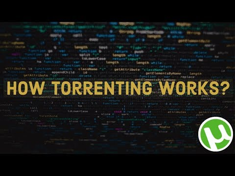 Torrents - How Do They Work?