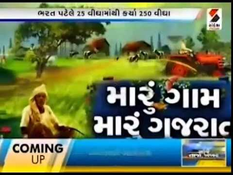 Successful farmer Morbi Gujarat || Sandesh News