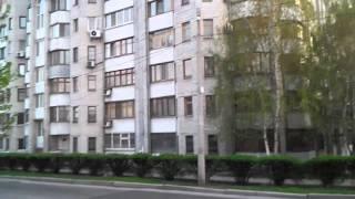 Крысы в Запорожье (видео 061)(, 2016-04-12T06:26:21.000Z)