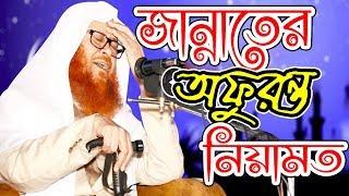 জান্নাতের অফুরন্ত নেয়ামত Bangla waz Sayed kamaluddin zafree