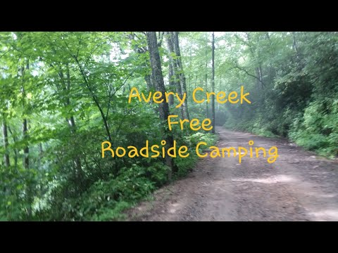 Pisgah National Forest Free Camping Avery Creek