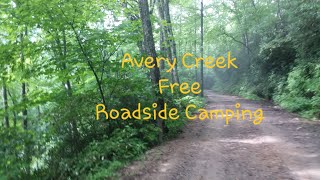 Pisgah National Forest Fŗee Camping Avery Creek