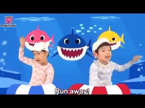 Lagu Anak Anak Lucu I Bayi Shark