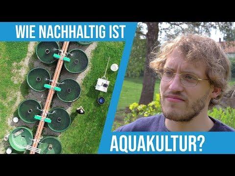 Johann Fragt Nach(haltig): Wie Nachhaltig Ist Aquakultur?