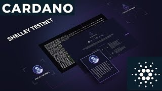 Cardano Shelley Testnet RELEASE; Western Union XRP Testing; CEO Margin Trades User Funds