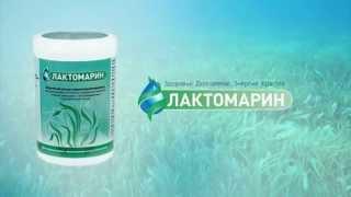 видео Лактомарин в Астане