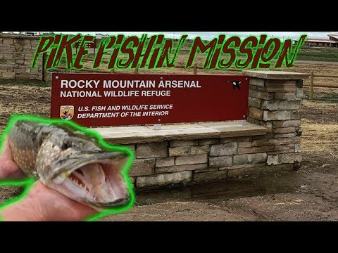 Rocky Mountain Arsenal (Fall Pike Fishing)
