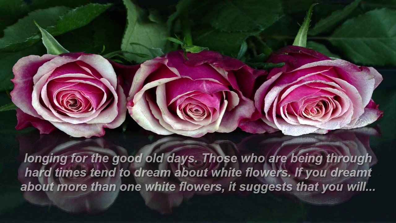 Flower dream meaning youtube flower dream meaning mightylinksfo