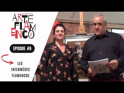 [ Épisode 6 ] Les Rendez-vous Arte Flamenco, c'est aussi des Intermèdes flamencos