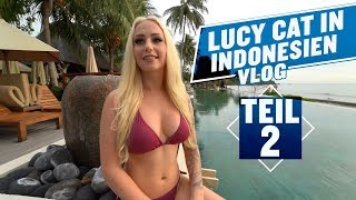 LUCY CAT IN INDONESIEN, LOMBOK TEIL 2 ! URLAUB`S VLOG