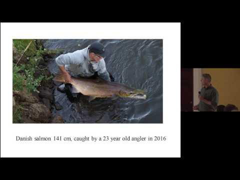 Niels Jepsen, Section for Freshwater Fisheries Ecology, DTU-Aqua - From Headwater to Headland