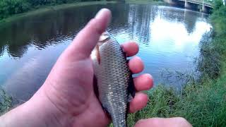 Рыбалка Бежецк 1