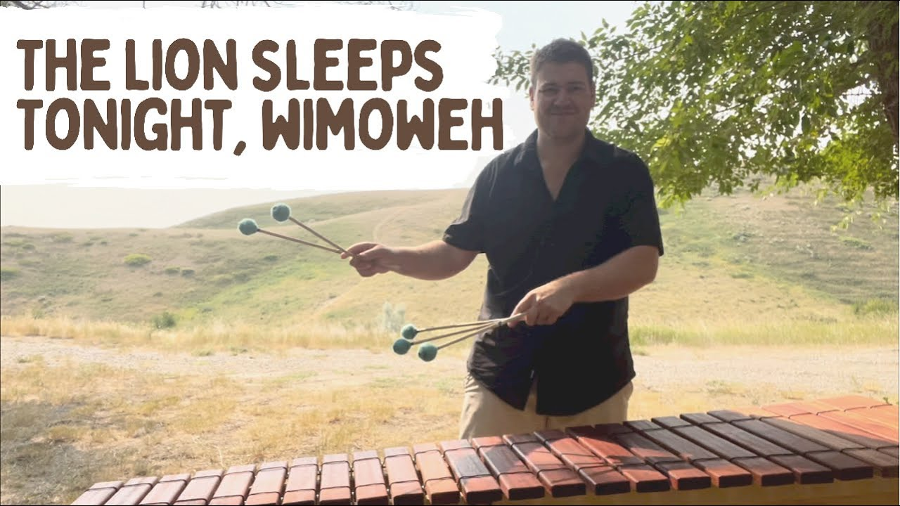 The Lion Sleeps Tonight, Wimoweh - Fun One Man Band Cover! (The Lion King)