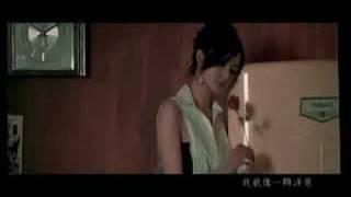 yang chong(Onion)-yang zhong wei