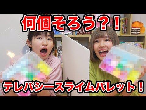 【SLIME】スライム何個一致する?テレパシースライムパレットチャレンジやってみた!Twin Telepathy Slime Palette Challenge
