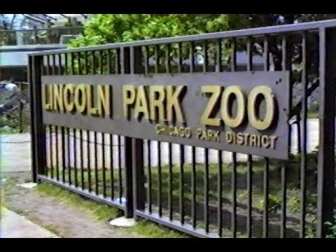 1979 Lincoln Park Zoo Chicago - Home Video