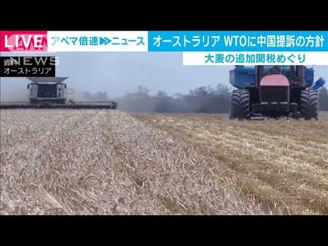 豪がWTOに中国を提訴の方針 大麦の追加関税を受け(2020年12月16日)