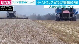 豪がWTOに中国を提訴の方針 大麦の追加関税を受け(2020年12月16日) - YouTube