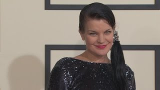 NCIS Actress Pauley Perrette Attacked Again