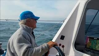Seawind 1190 Speed Sailing Resimi