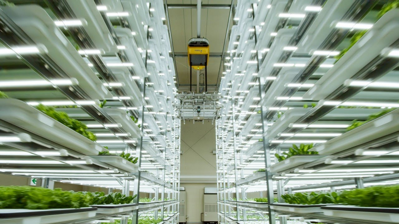 State-of-the-art Automated plant factory Farm & Factory TAMURA