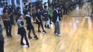 La Llama Line Dance Demo Walk Through