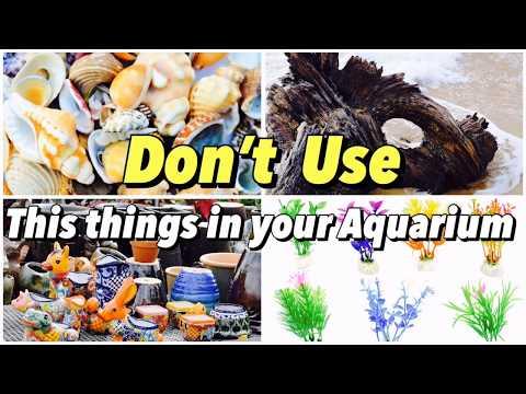Aquarium Decorations-Be careful in Choosing and Using (Tamil)