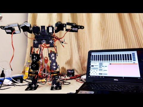 17 DOF Humanoid Testing#2 | Walking Stabilization Arm Motion  | Arduino Servo Controller