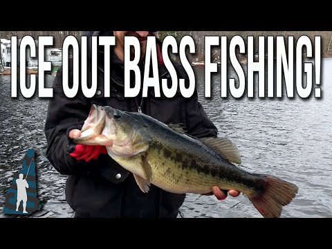 Ice Out Bass Fishing!