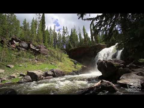 Moose Falls in Yellowstone