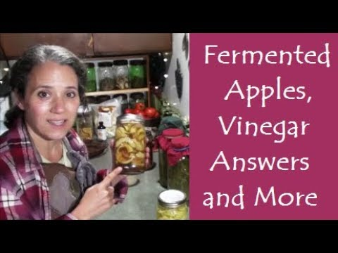 Fermented Apples, Vinegar Answers, and More