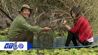 Sản vật 'hiếm - độc' ở Vườn quốc gia U Minh Hạ | VTC