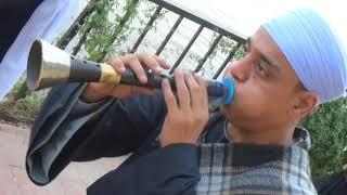 مزمار صعيدى وطبل بلدى فى زفه الحجاج مع الحاج احمد