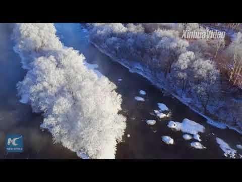 Enjoy gorgeous rime scenery along river in NE China's Heilongjiang
